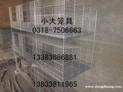 销售十二位鸽笼 十二位兔笼 九位兔笼 十六位鸽笼 鸡笼 狗笼